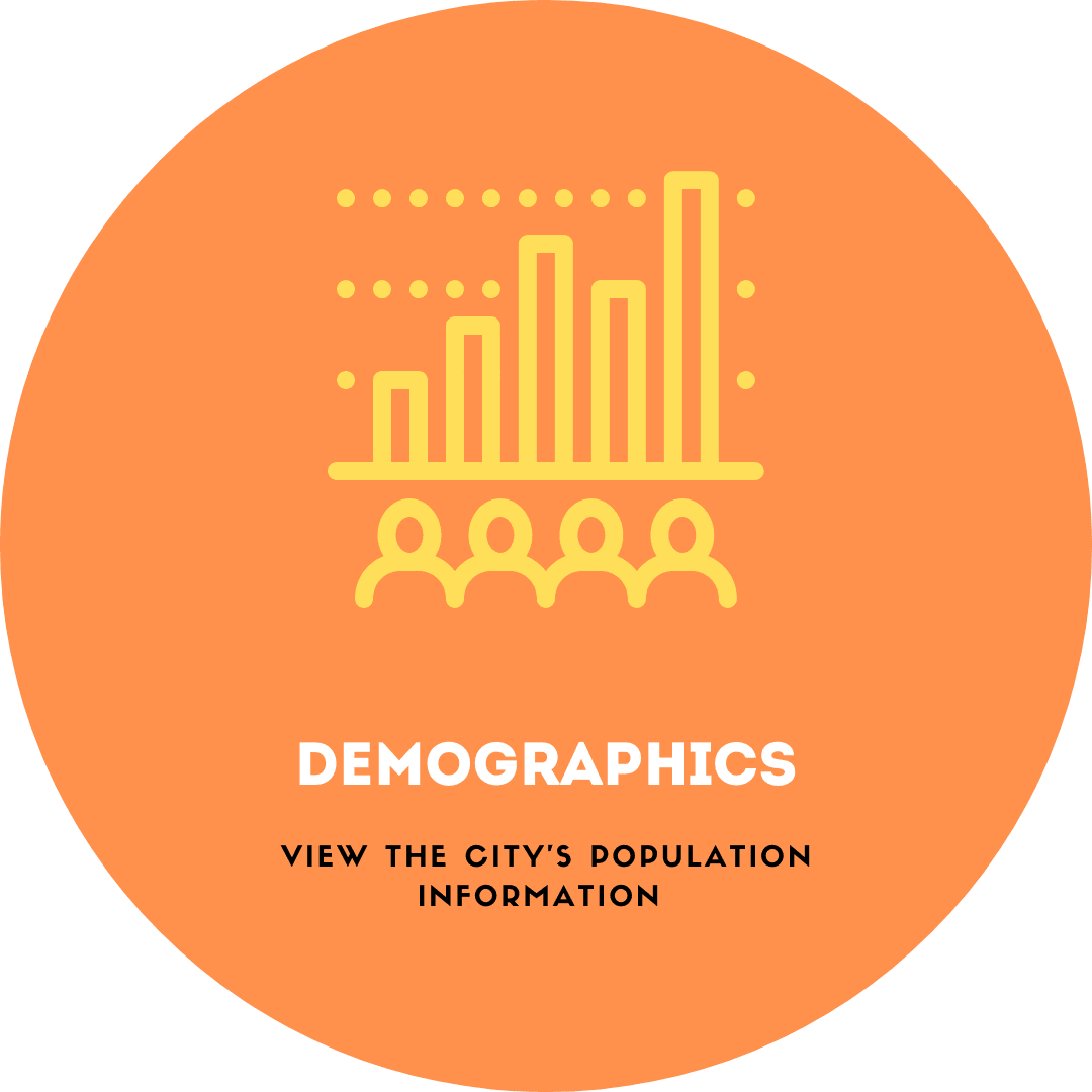 Graphic Links demographics